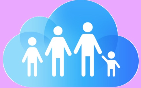 Partage familial: une bonne idée qui ne va pas assez loin