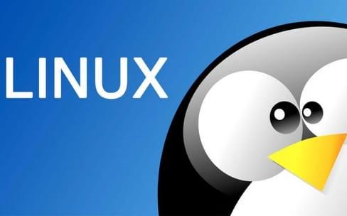 Dell est très content des ventes de ses portables Linux