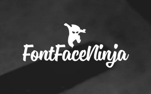 FontFace Ninja, une extension pour identifier facilement les polices des sites web