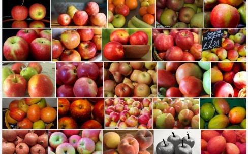 Flickr recherche des images similaires