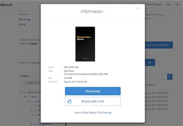 Nouvelle fonction web de prévisualisation et de téléchargement rapide des fichiers. Cliquer pour agrandir