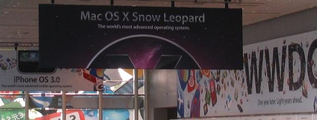 snowleopardbanniereflickr